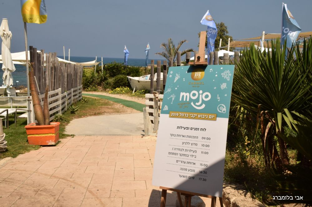 mojo-carmel-005