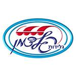 גלידות-פלדמן-logo